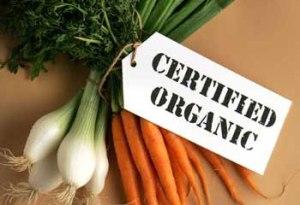 organic_big